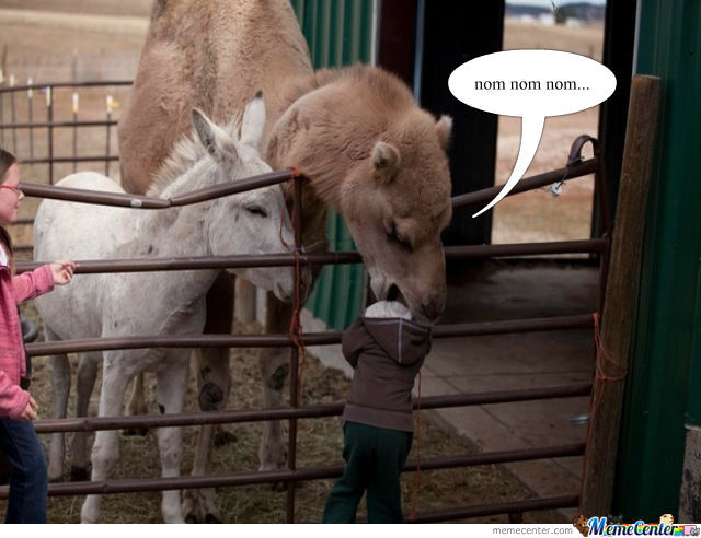 Funny Zoo Memes : When you don't buy the pellets at the petting zoo by thatguyxlr
