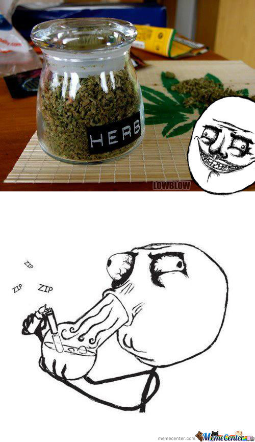 When You Find Some Weed...