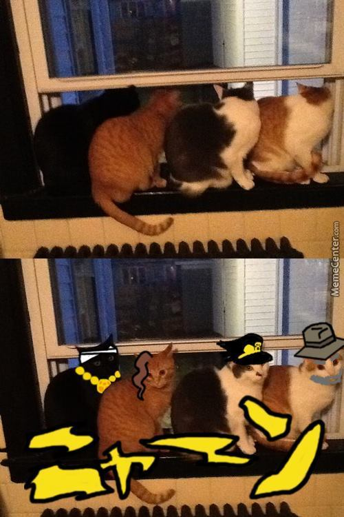 When You Have To Kill Dio, But You Are A Cat