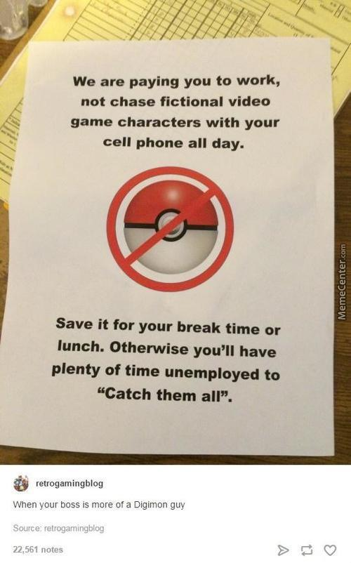When Your Boss Is More Of A Digomon Guy...