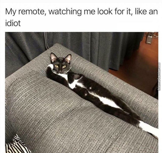 Where Is That Damn Remote?!