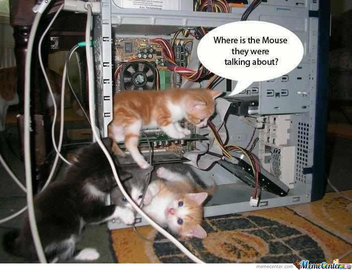 Where's The Mouse?