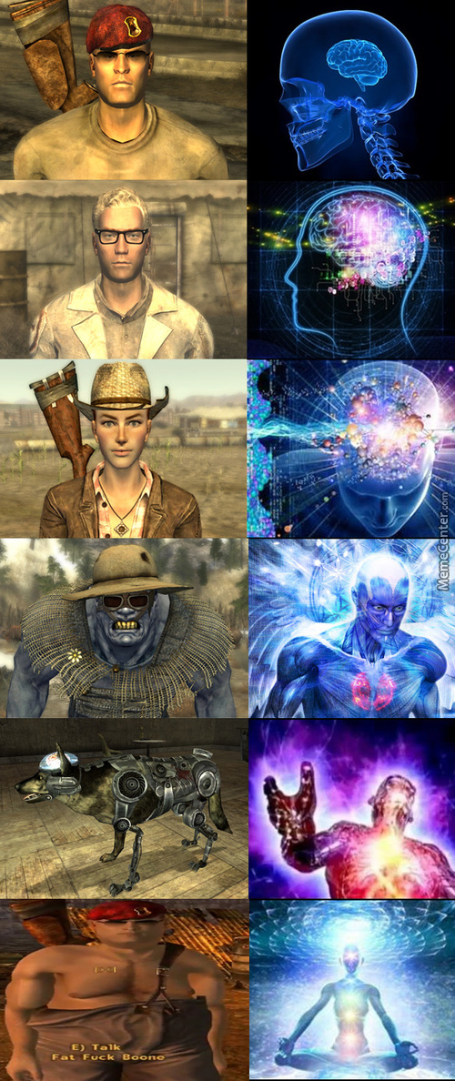 Which Is The Best Fallout Nv Companion?