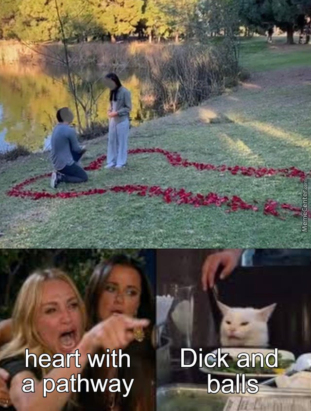 Who Did The Petals?