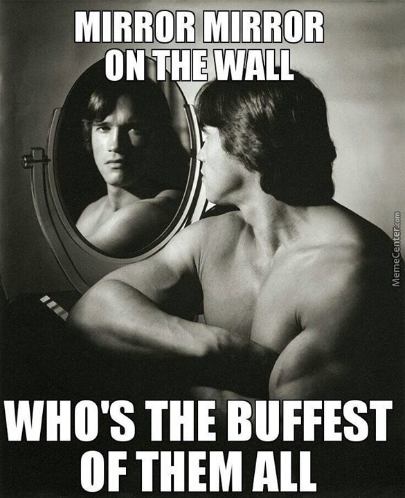 who else could it be_o_3215027 arnold schwarzenegger memes best collection of funny arnold,Arnold Meme
