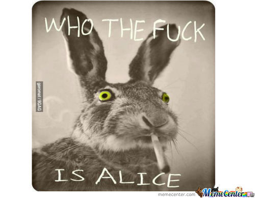 Who The Fuck Is Alice