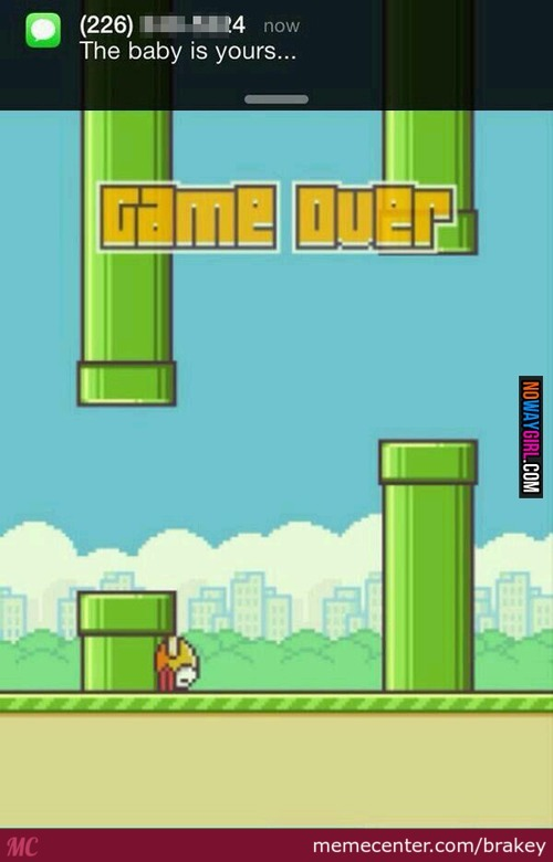 Why Flappy Whyy
