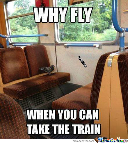 Why Fly...