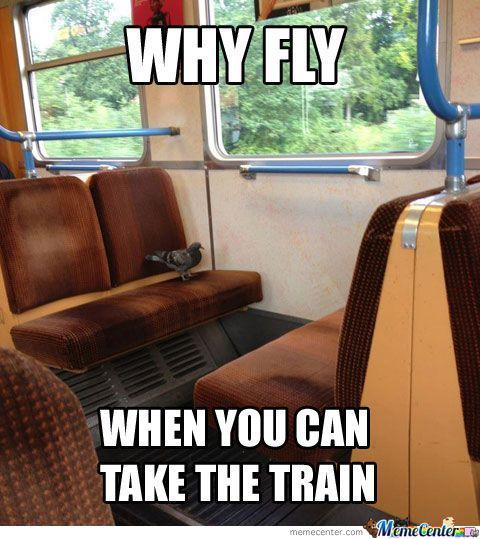Why Fly?