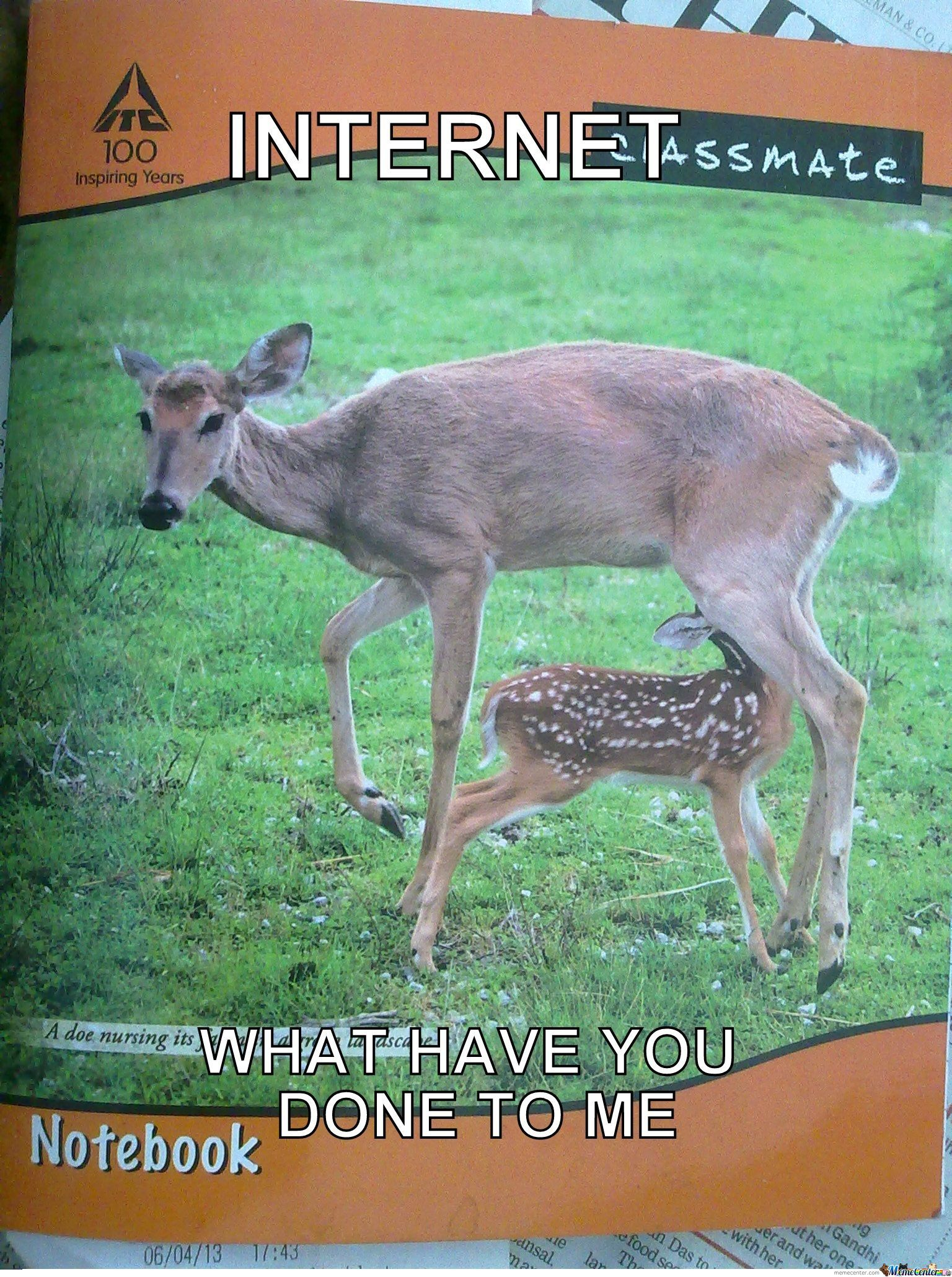 Why Internet Why? That Fawn Was Soo Innocent