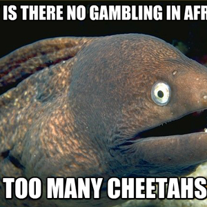 There no gambling in africa minecraft casino plugin