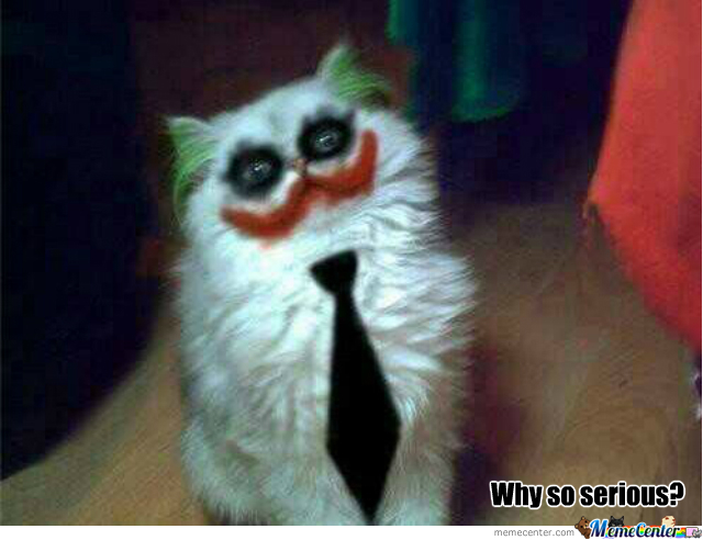 Why So Serious Cat
