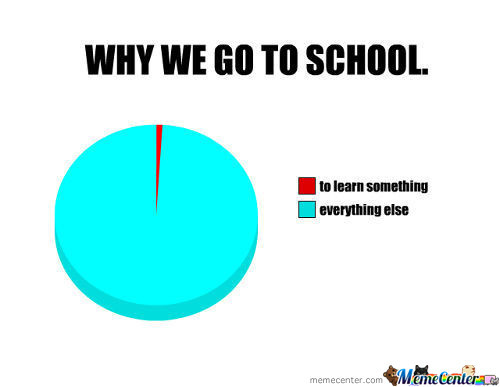 Why We Go To School