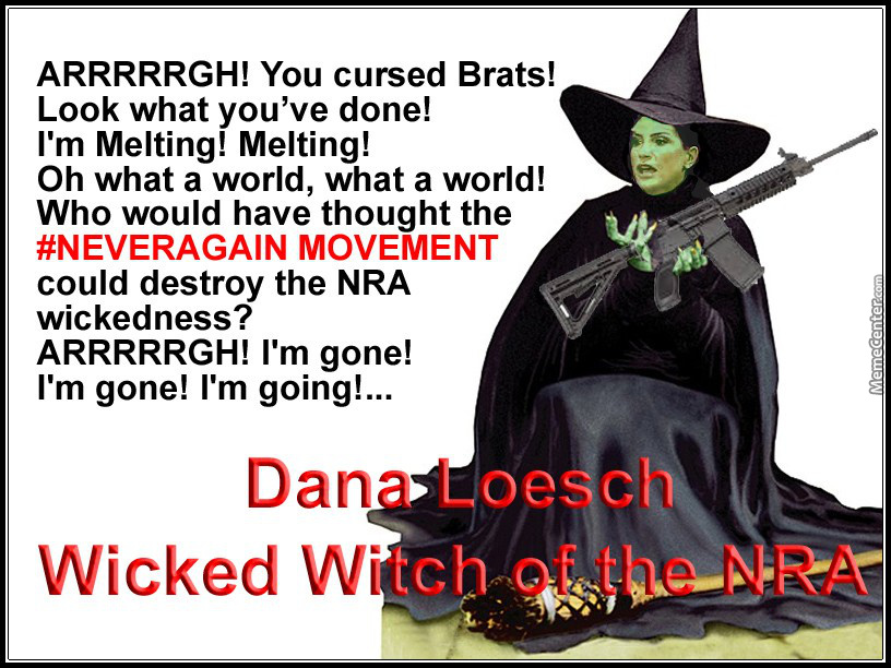 wicked witch of the nra_o_7215858 wicked witch of the nra by mike_74814 meme center