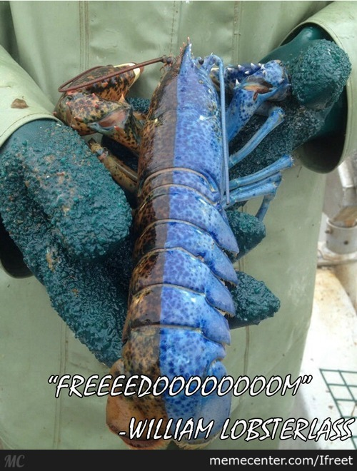 William Wallace's Lobster