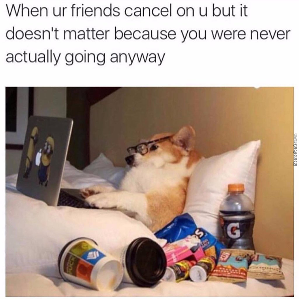 Wow , Much Disappointed  ,  Such Shame