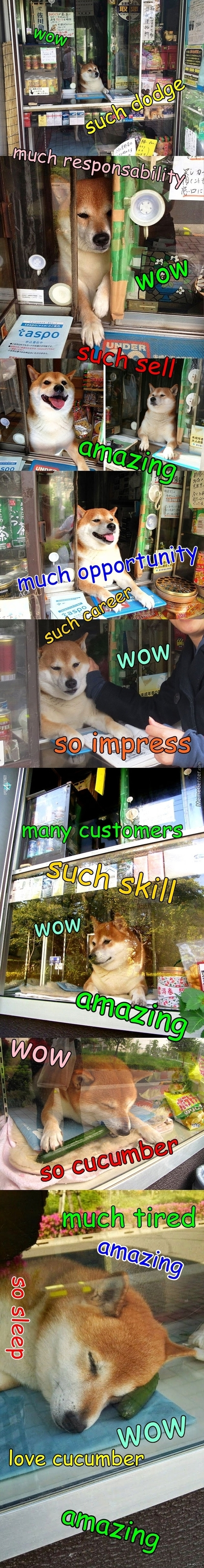 Wow Such Cute Much Seller