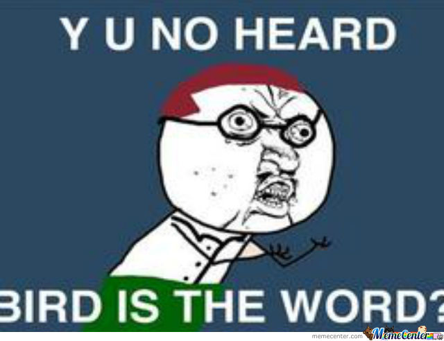 Y U No Bird Is The Word?!