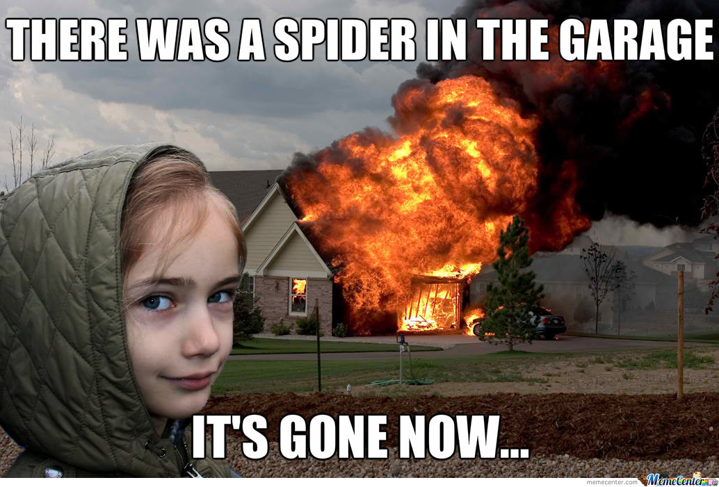 girl burning house meme