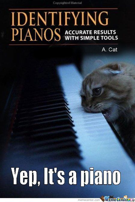 Piano Memes Best Collection Of Funny Piano Pictures