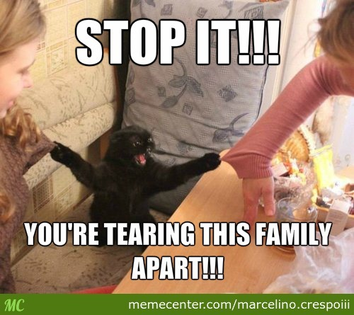 You're Tearing This Family Apart!!!