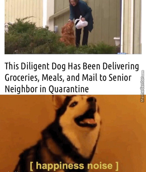 You Are A Good Dog, Thank You