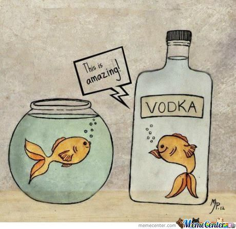 You Drunky Fish.....