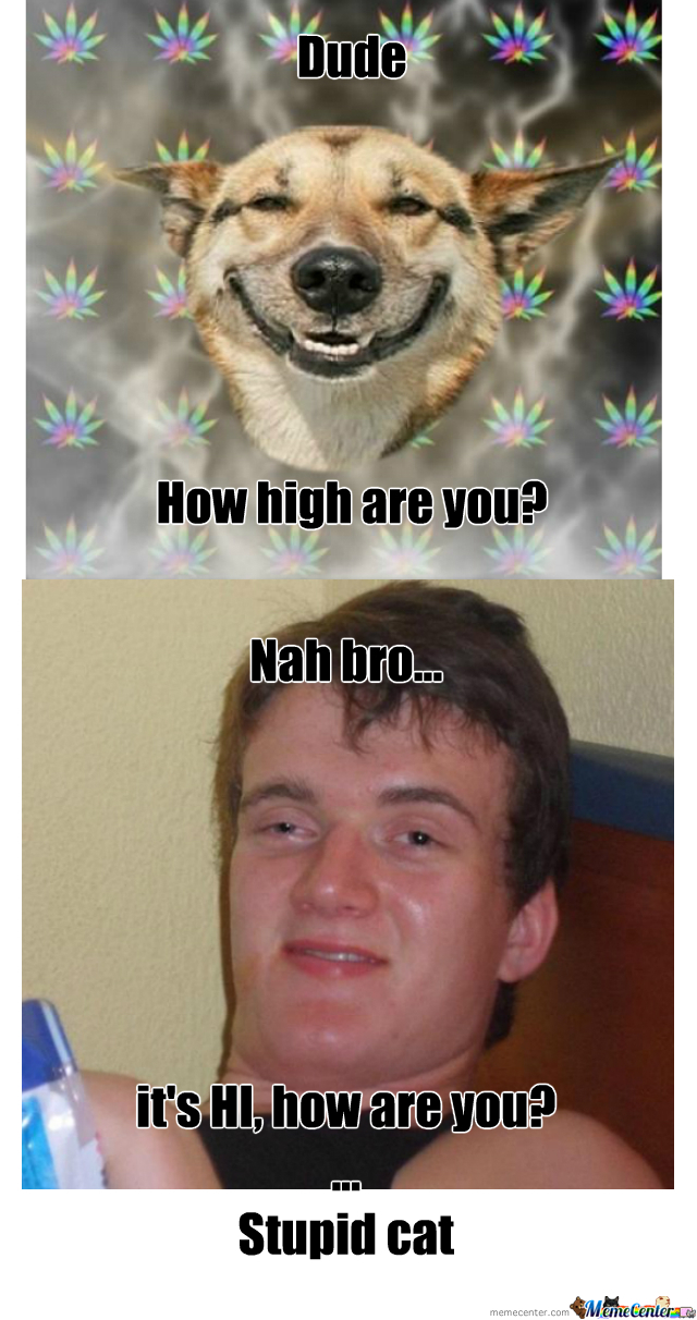 You High Bro By Recyclebin Meme Center