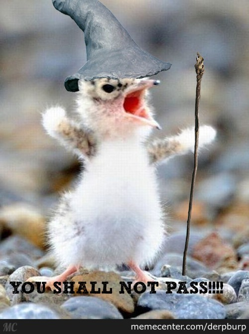 You Shall Not Pass!!!!!