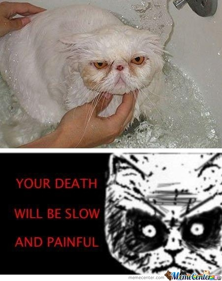 Your Death...