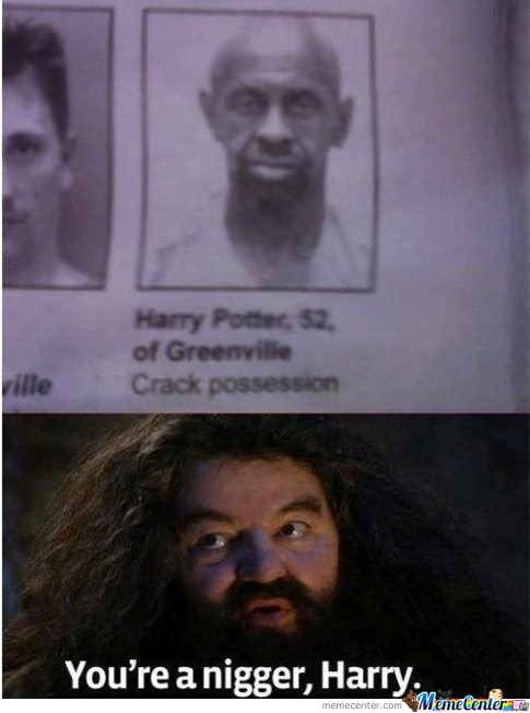 You're A Nigger Harry