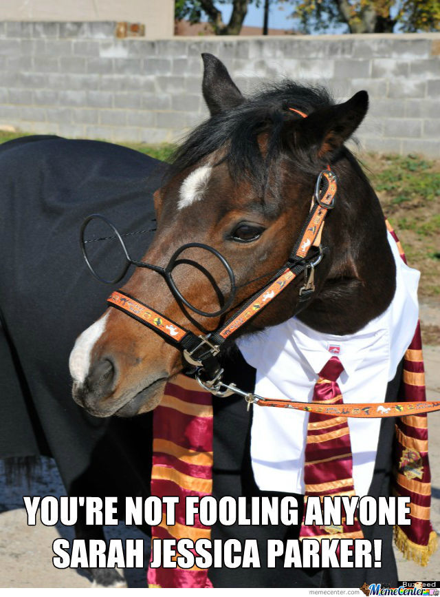 You're Not Harry Potter!